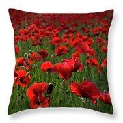 Umbria  Poppies 3 Throw Pillow