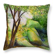 Un Rincon En El Valle De Los Suenos Throw Pillow