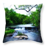 Unami Creek Dam Throw Pillow by Bill Cannon