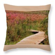 Uncharted Territory Throw Pillow