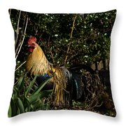 Uncle Rooster Throw Pillow