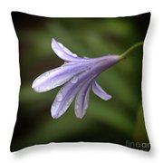 Uncomplicated Throw Pillow