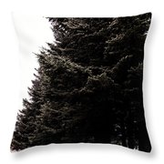 Under The Blue Spruce Throw Pillow