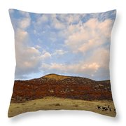Under The Colorado Sky Throw Pillow