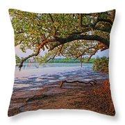 Under The Mangroves Throw Pillow