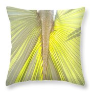 Under The Palm I Gp Throw Pillow