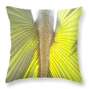 Under The Palm II Gp Throw Pillow