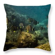 Under The Sea Scape Throw Pillow