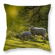 Under The Setting Sun Throw Pillow