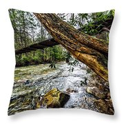 Under The Swinging Bridge Throw Pillow