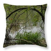 Under The Wild Wood Arch Throw Pillow