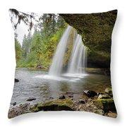 Under Upper Butte Creek Falls In Autumn Throw Pillow