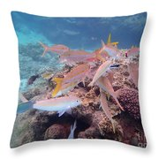 Under Water Fiji Throw Pillow