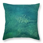Under Water View Throw Pillow