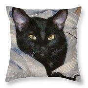 Undercover Kitten Throw Pillow by Jeff Kolker