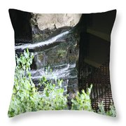 Underneath Fallingwater  Throw Pillow
