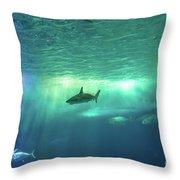 Undersea Scene Background Throw Pillow