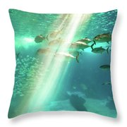 Underwater Background With Sunbeams Throw Pillow