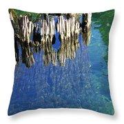 Underwater Cypress Stump Throw Pillow