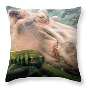 Underwater Hippo Throw Pillow