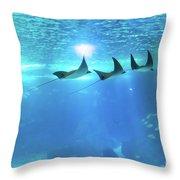 Underwater Manta Background Throw Pillow