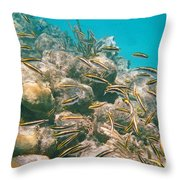 Underwater Photography Throw Pillow