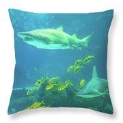 Underwater Shark Background Throw Pillow