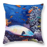 Underwater Treasures Throw Pillow