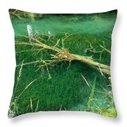 Underwater Tree Throw Pillow