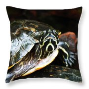 Underwater Turtle Throw Pillow