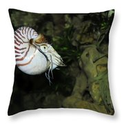 Underwater01 Throw Pillow
