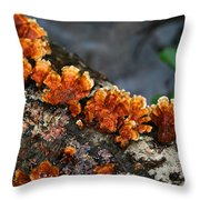 Unexpected Brightness Throw Pillow