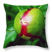 Unexploded Peony Throw Pillow