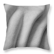 Unfolding And Enfolding - Iv Throw Pillow