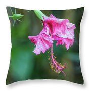 Unfolding Of A Hibiscus Throw Pillow