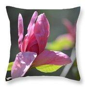 Unfolding - Star Magnolia Throw Pillow