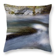 Unhurried Throw Pillow