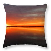 Unimagined Passion Throw Pillow