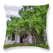 Uninhibited In Color Throw Pillow
