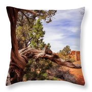 Unique Desert Beauty At Kodachrome Park In Utah Throw Pillow