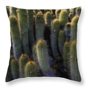 Unique Throw Pillow