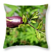 Unique Sprout Throw Pillow