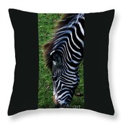 Uniquely Identifiable Throw Pillow