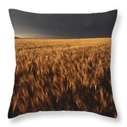United States, Kansas, Summer Thunder Throw Pillow