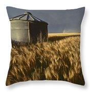 United States, Kansas Wheat Field Throw Pillow