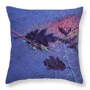 United States Maryland Still-life Throw Pillow