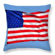 United We Stand United We Fall Throw Pillow