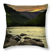 Unity Throw Pillow