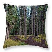 University Of Alaska Fairbanks Trail System Throw Pillow