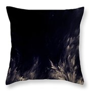 Unknown Light Throw Pillow